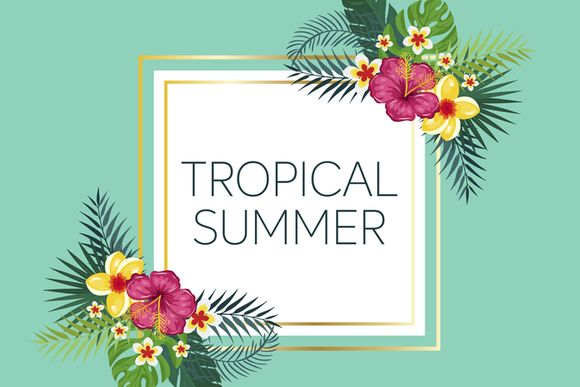 Lookbook - Tropical Summer