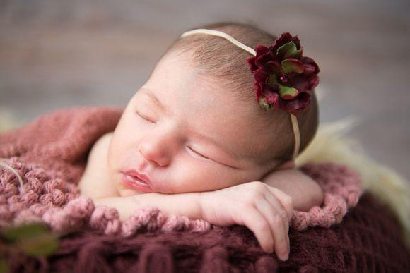 Ensaio Recém-Nascido, Newborn - Julia ( 14 dias )